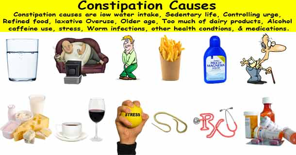 The Gut Is The New Brain Constipation Can Be Complex